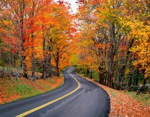 Autumn-Road-L2